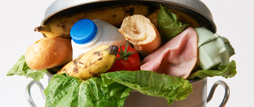 How to Manage Food Waste in School Dining Programs for a More Sustainable Future